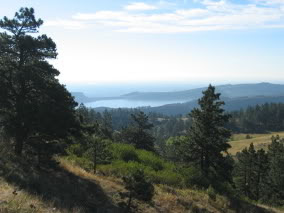 As you gain altitude, views expand all around you. To the south and east, Horsetooth Reservoir and conifer-covered foothills are visible.