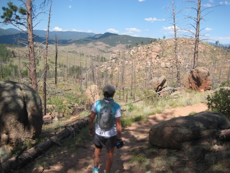 Leaving a forested stretch of the Shinglemill Trail to run through the Buffalo Creek burn area.
