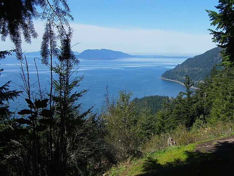 View from a clearing partway up the Oyster Dome trail.  Photo by Peter Stevens.