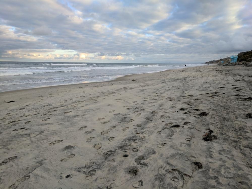 Torrey Pines State Beach. Gorgeous!
