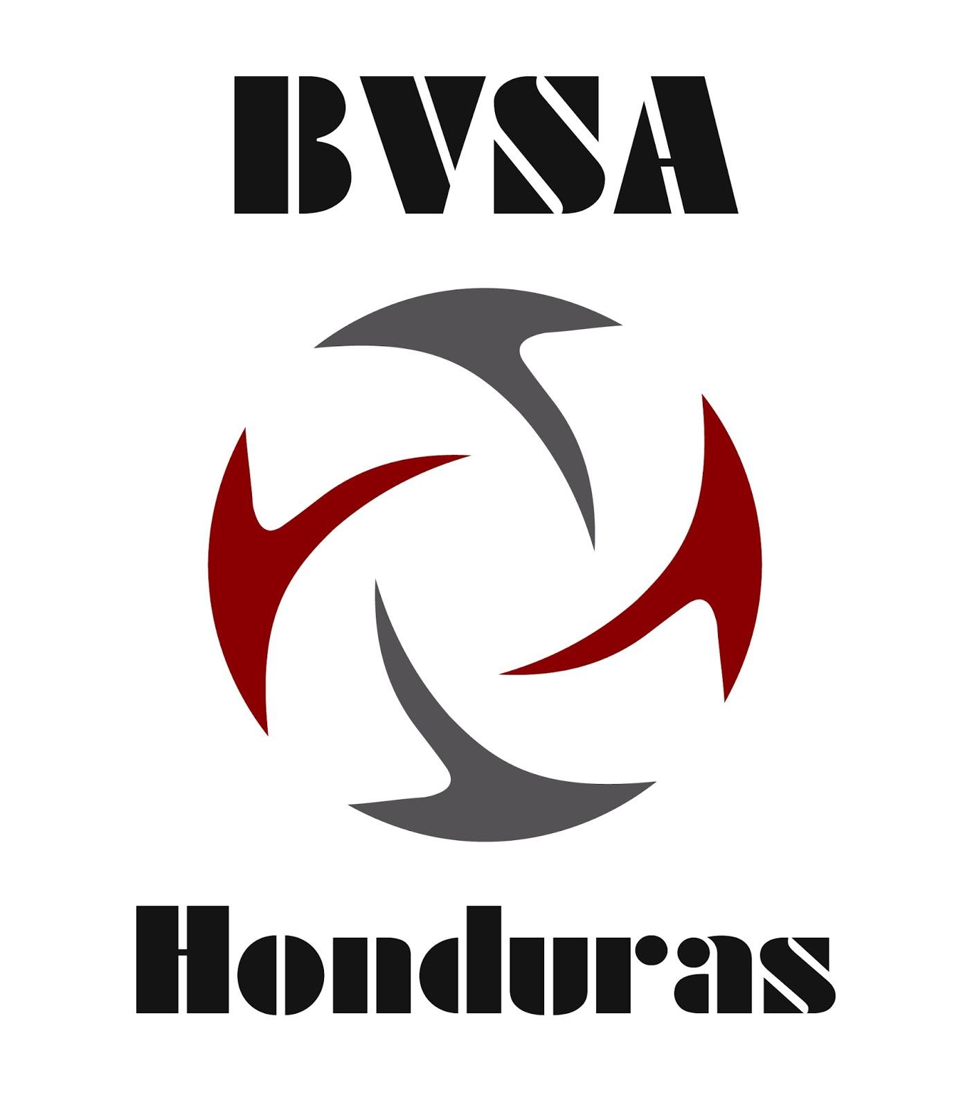 BVSA Honduras.jpg