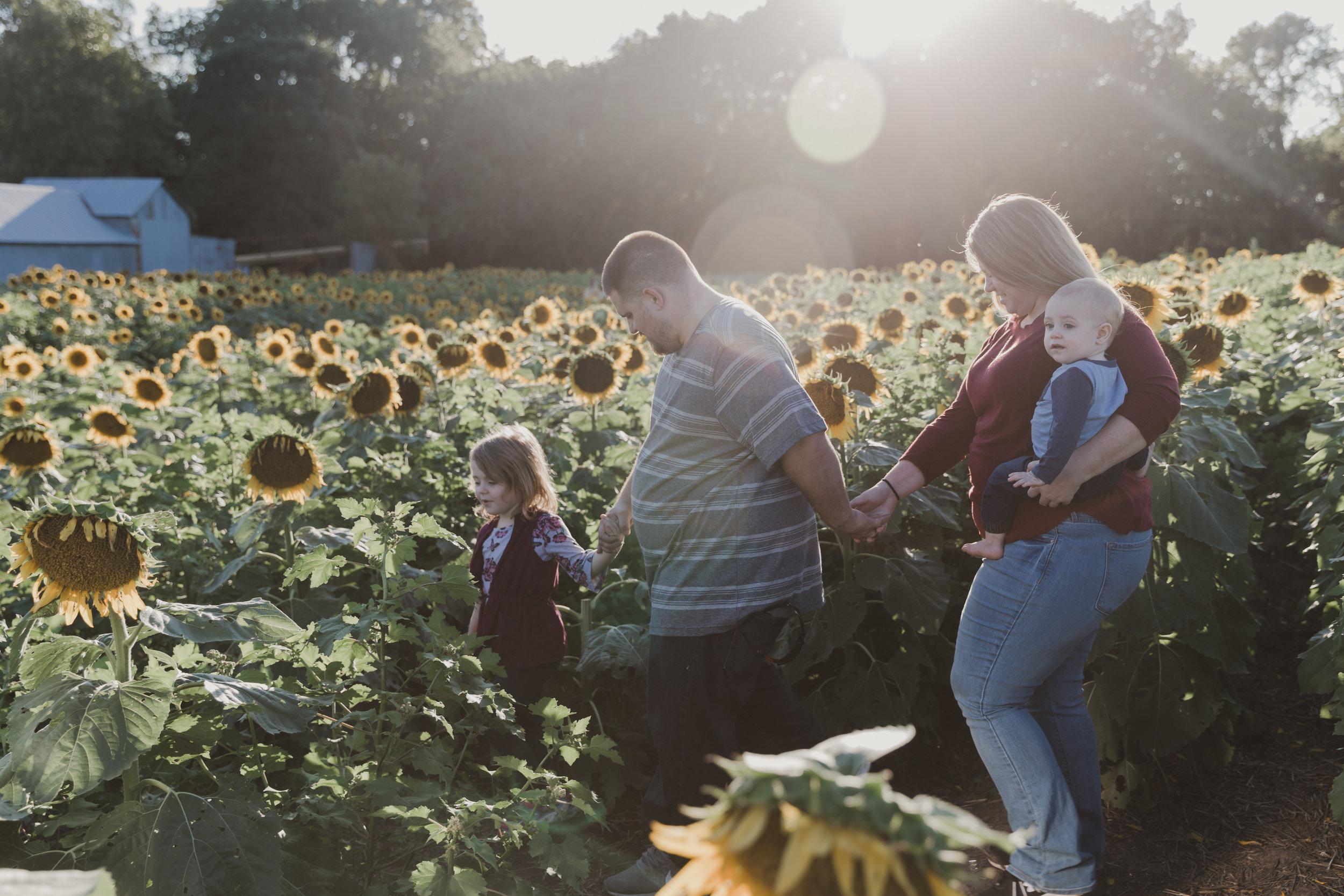 Crow Family Sunflower Mini Session-5.jpg