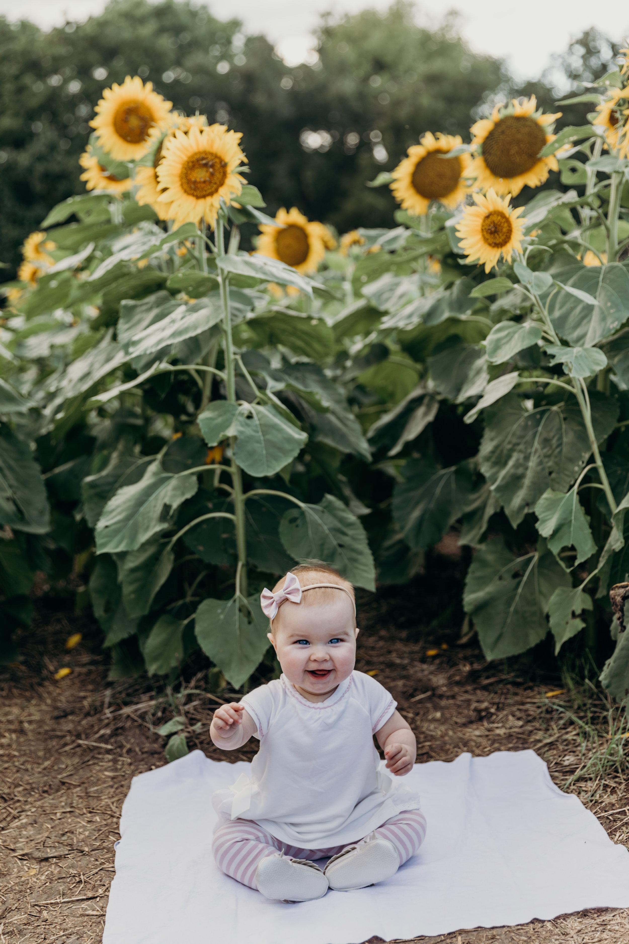 Cumberford Sunflower Mini Session-14.jpg