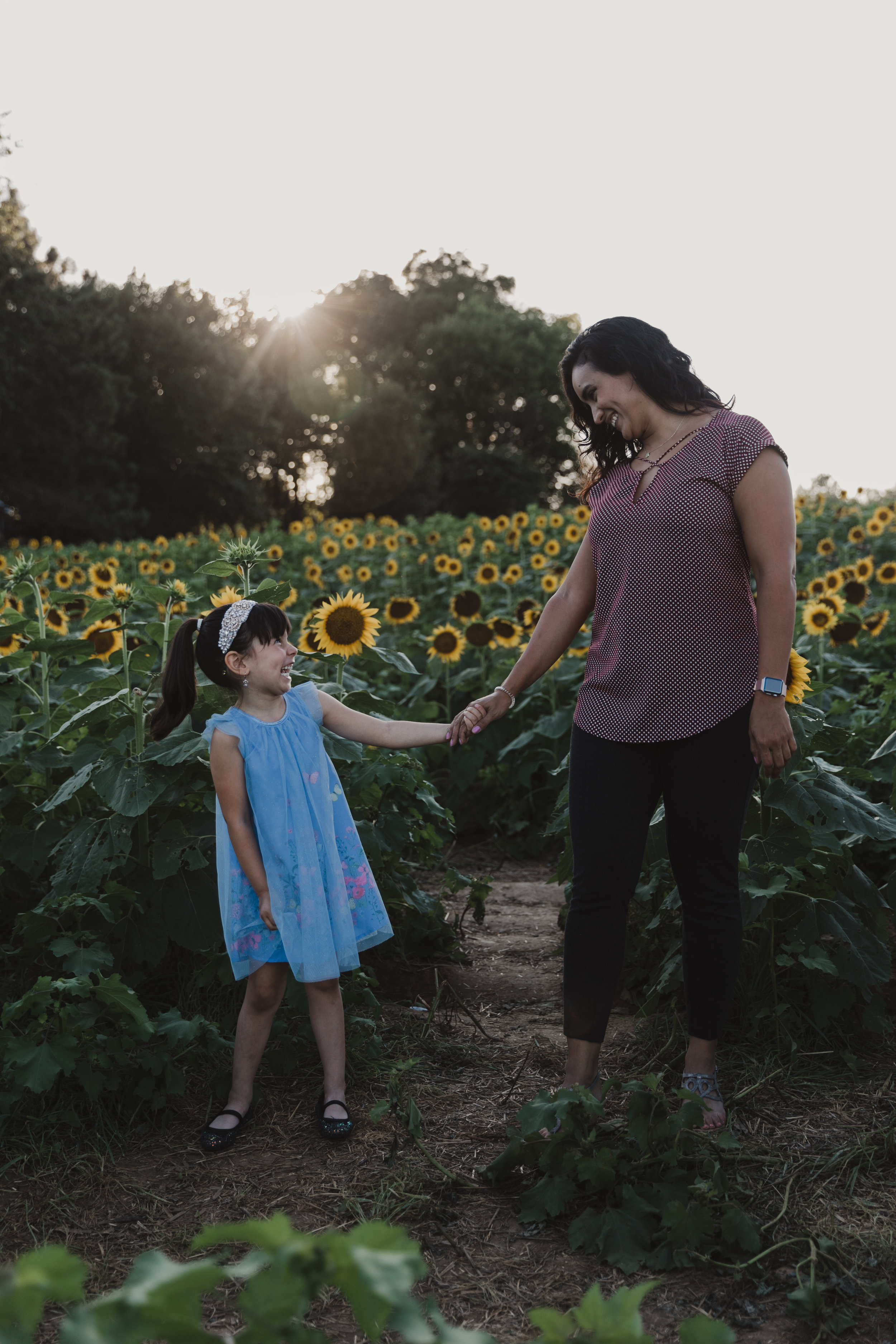 De La Cruz Sunflower Mini Session-21.jpg