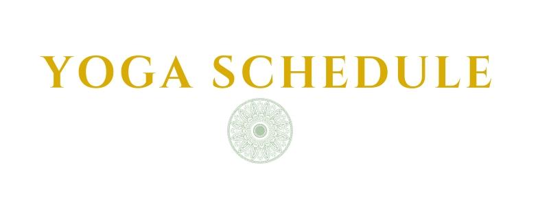 web- schedule.jpg