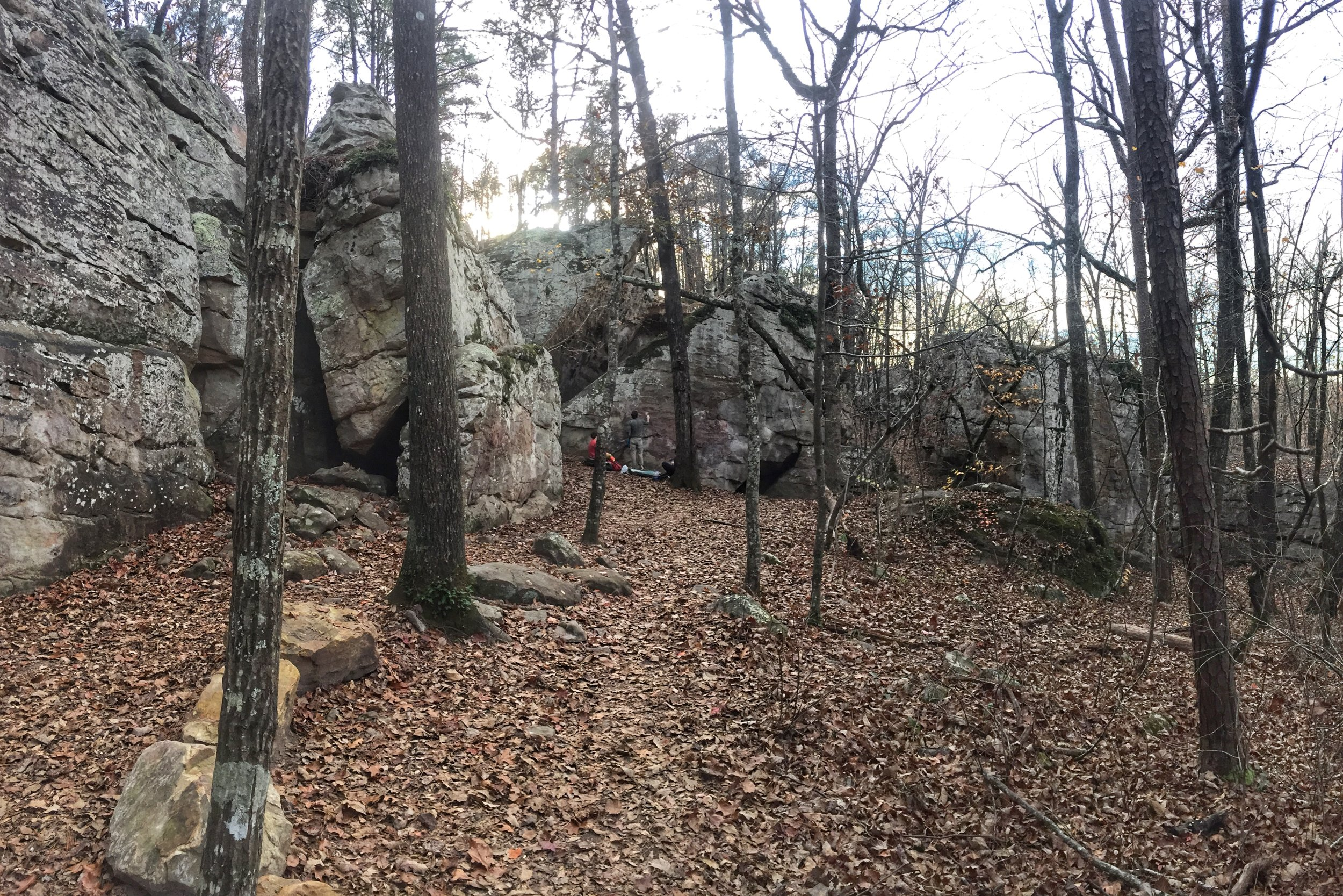 A perfect balance of nature and community, Moss Rock Preserve is a beautiful 349 acre nature preserve abundant with forest systems, rock outcroppings, streams, waterfalls, wildlife, and other unique natural features. Currently, Moss Rock Preserve is home to four rare species of plants and a rare variant of Little River Canyon Sandstone Glade that is thought to be one of only 35 occurrences known around the world!