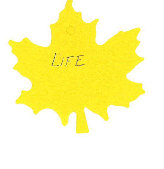leaf_Page_10.jpg