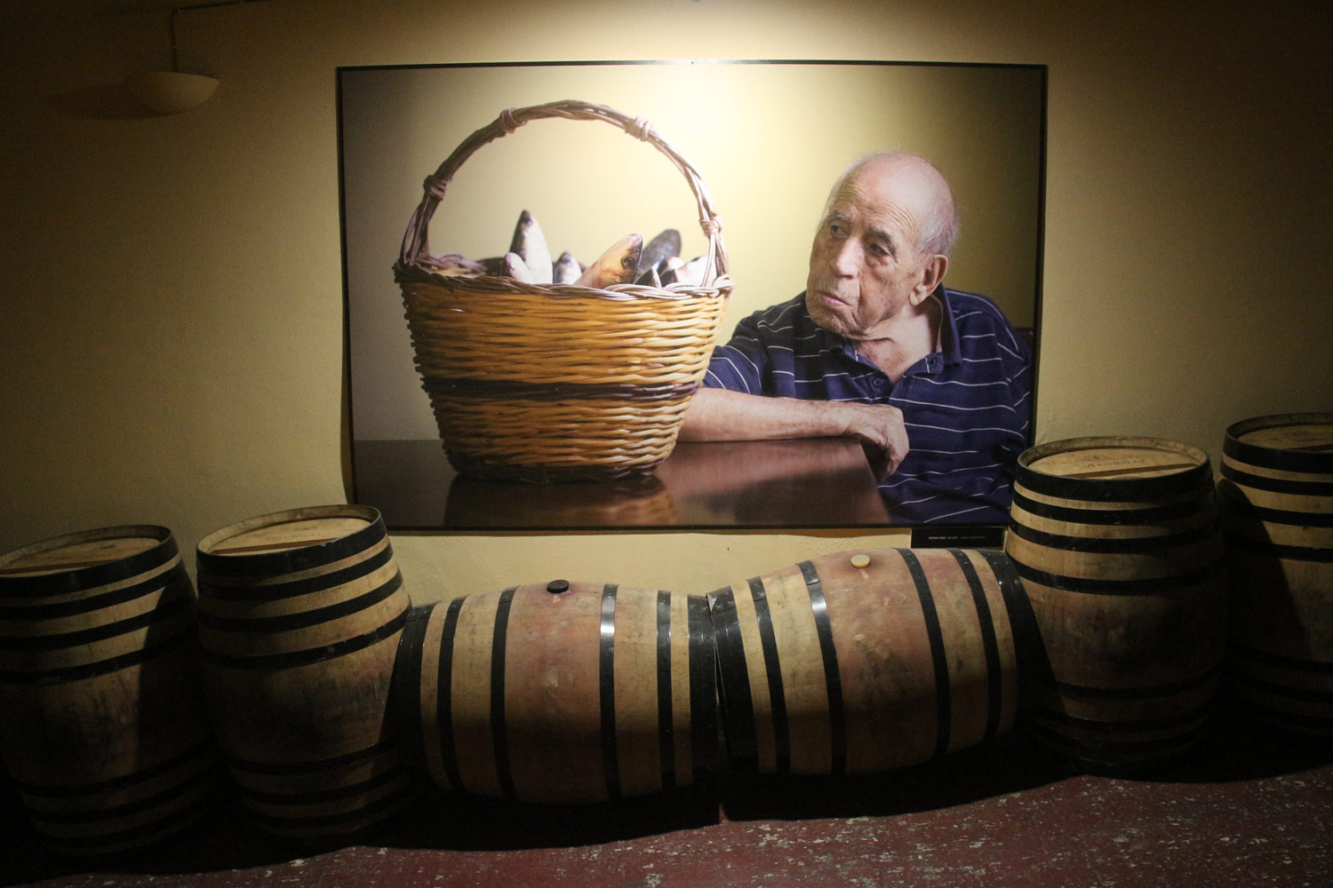 Photos of Sardinian centenarians at Argiolas winery