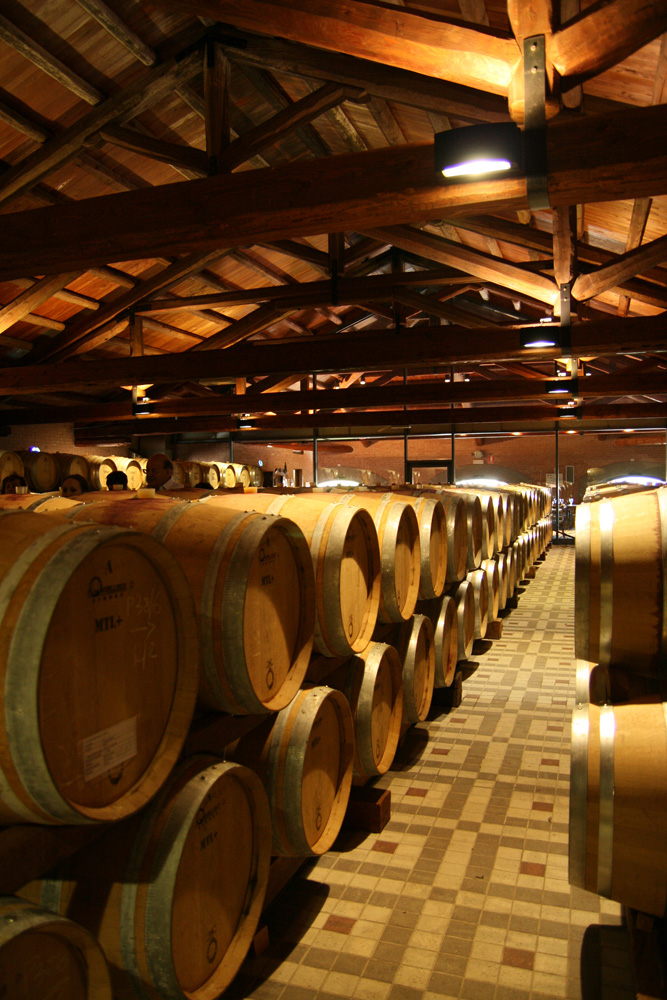 Braida's barrique room, brimming with French oak for barbera.