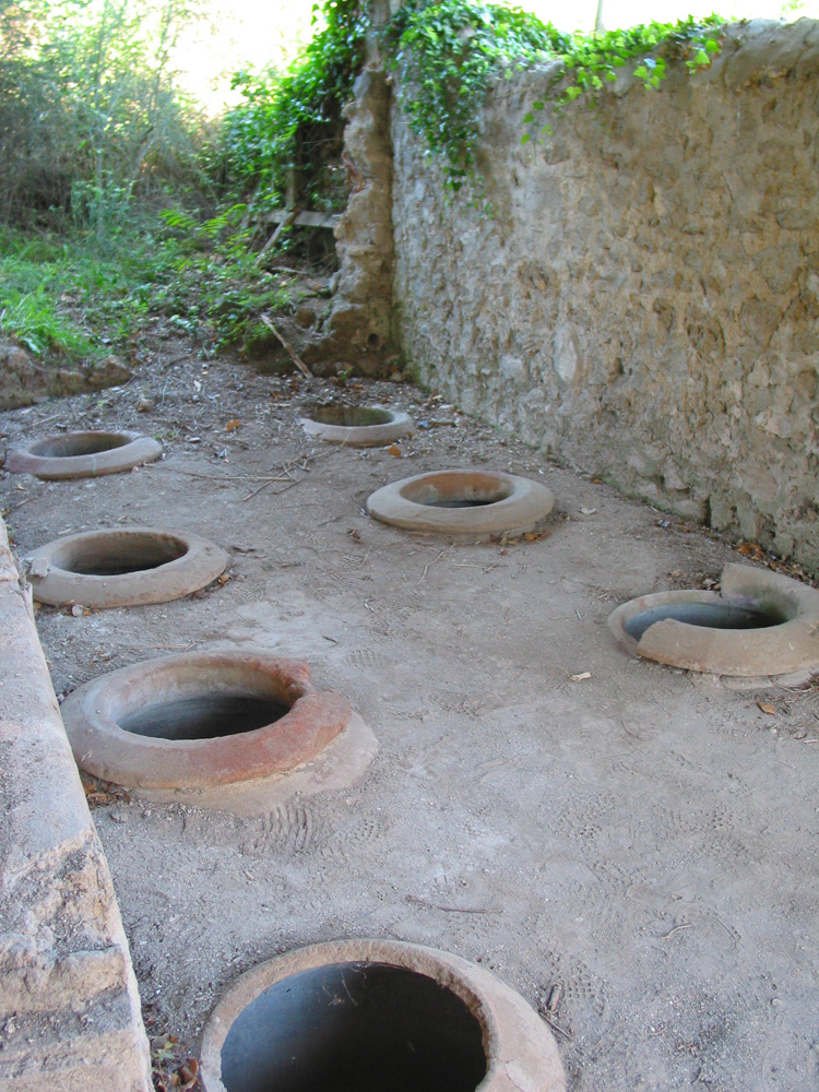 Doli , where Roman's used the natural coolness of the earth to control fermentation temperatures, awaiting further excavation.