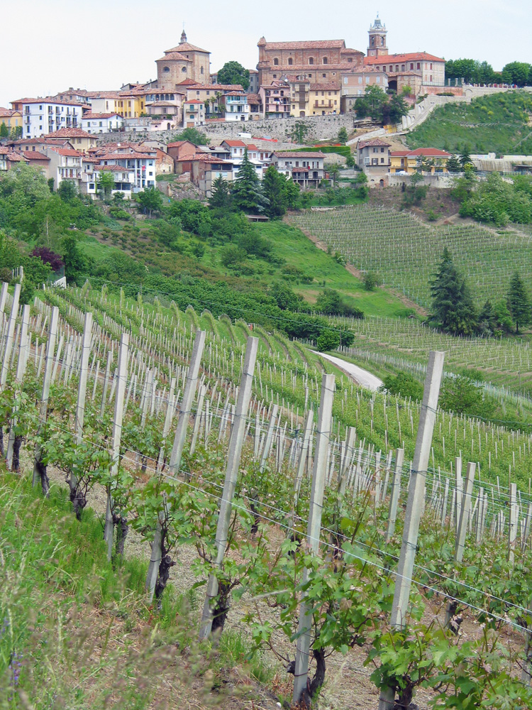 The commune of La Morra, just above Ratti's property