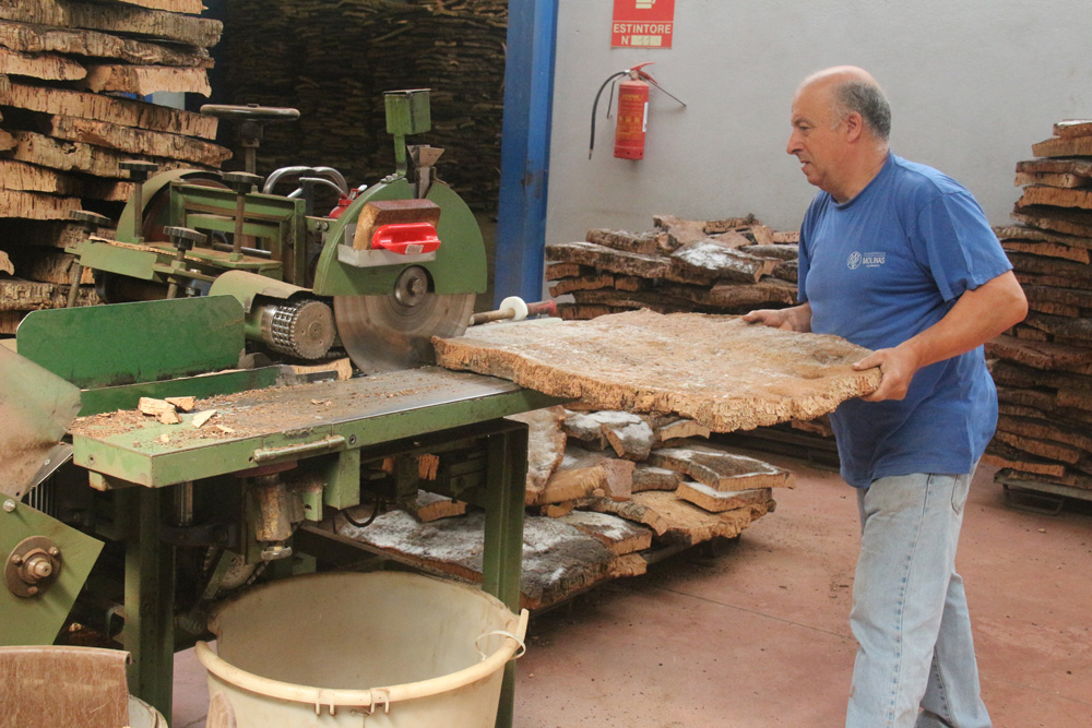 Cutting the flattened bark into strips.