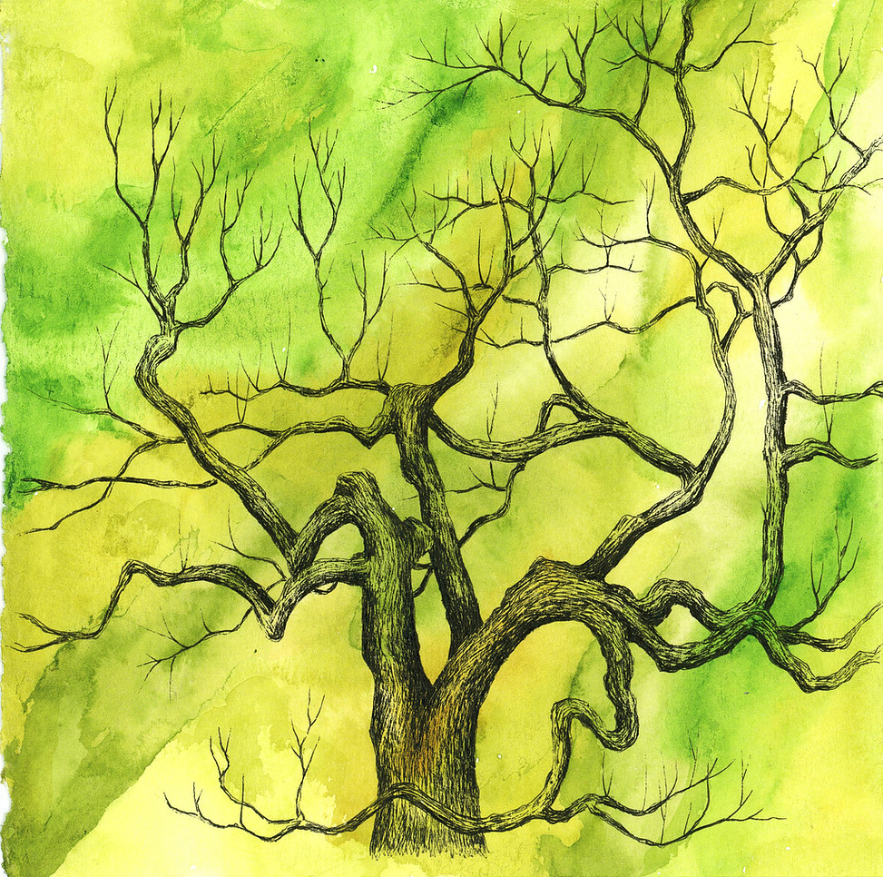 "tree 30 , 7""x7"", watercolor and ink on paper"