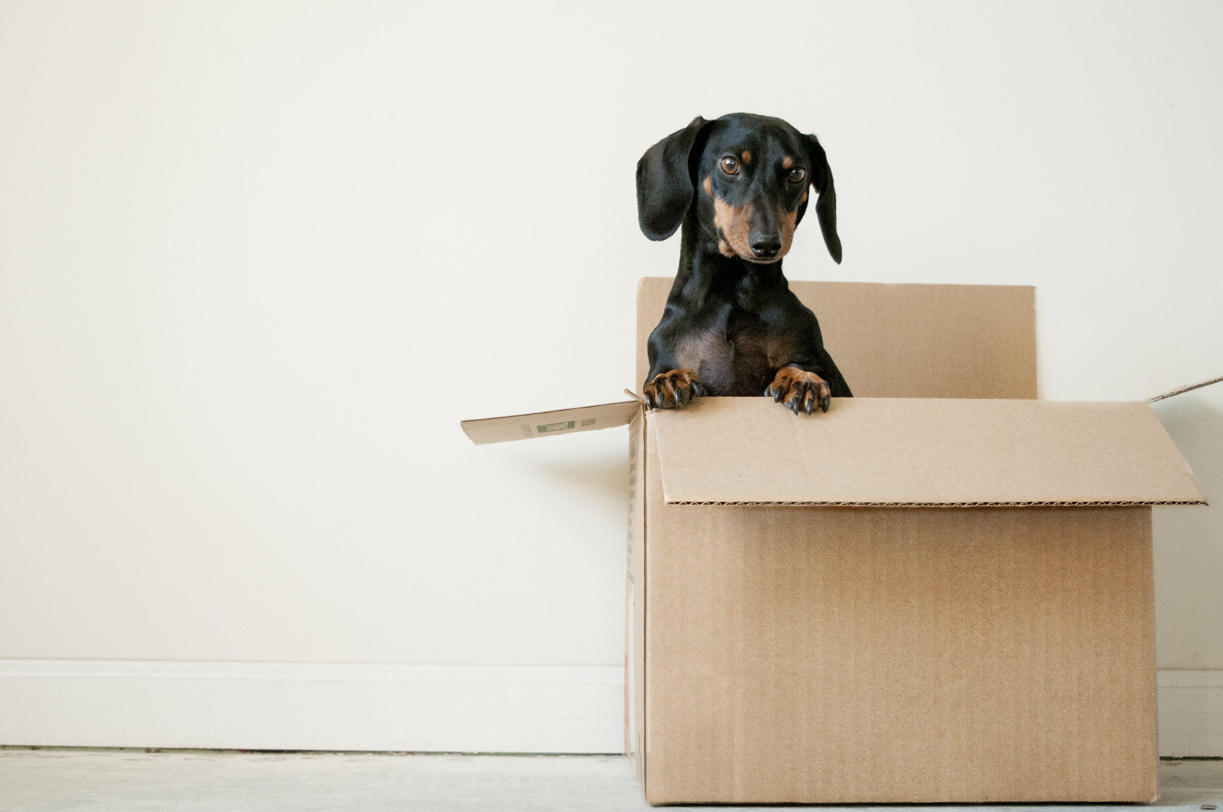 After the contract of sale goes unconditional you can start the packing and planning for moving house.