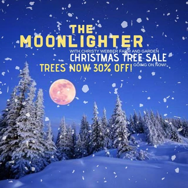 Christmas Tree Sale @moonlighterchicago ~ Trees now 30% off! We are teaming up with the best name in Christmas trees, @cwlfarmgarden!!! So stop in for a burger and a drink, and leave with the best tree in the neighborhood! #christmastree #sale #logansquare #humboldtpark #burgers #beerstagram #santa #frosty #fun