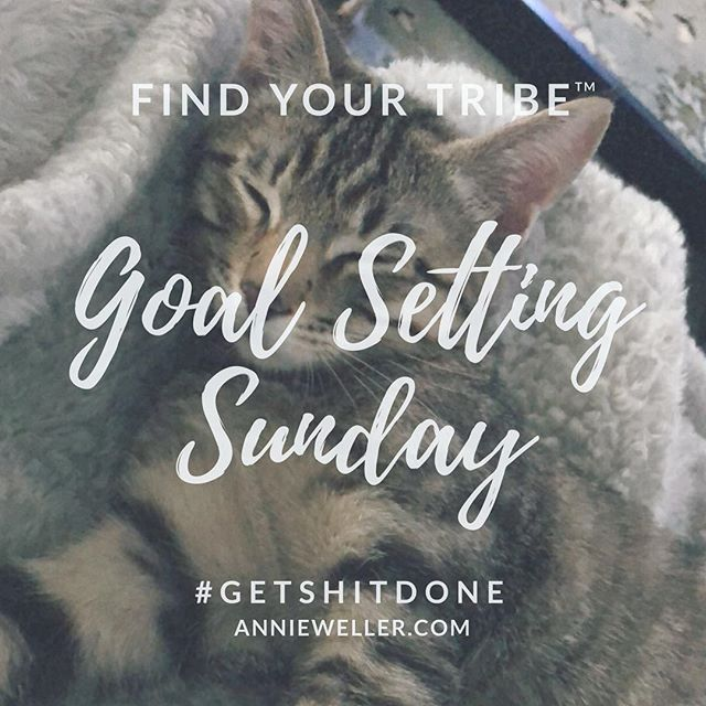 Happy #Sunday! Toby says don't forget today is #GoalSettingSunday! We must lay a firm foundation before we can continue our journey...either in business or our personal lives. #BetheUnicorn.⠀⠀⠀⠀⠀⠀⠀ .⠀⠀⠀⠀⠀⠀⠀ https://buff.ly/2EXqxbo⠀⠀⠀⠀⠀⠀⠀ .⠀⠀⠀⠀⠀⠀⠀ ⠀⠀⠀⠀⠀⠀ .⠀⠀⠀⠀⠀⠀ .⠀⠀⠀⠀⠀⠀⠀ .⠀⠀⠀⠀⠀⠀⠀ #motivation #quoteoftheday #pdx #lgbt #entrepreneurship #book #publishing #author #speaker #portlandbusiness #businessconsultant #businessconsulting #businesscoach #businesscoaching #lifecoach #lifecoaching #startuppdx #nativeamerican #nativeowned #nativewoman #nativewomenownedbusiness #womenentrepreneurs #womanowned #womanownedbusiness #bulletjournal