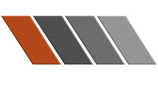 bass logo brighter orange.jpeg