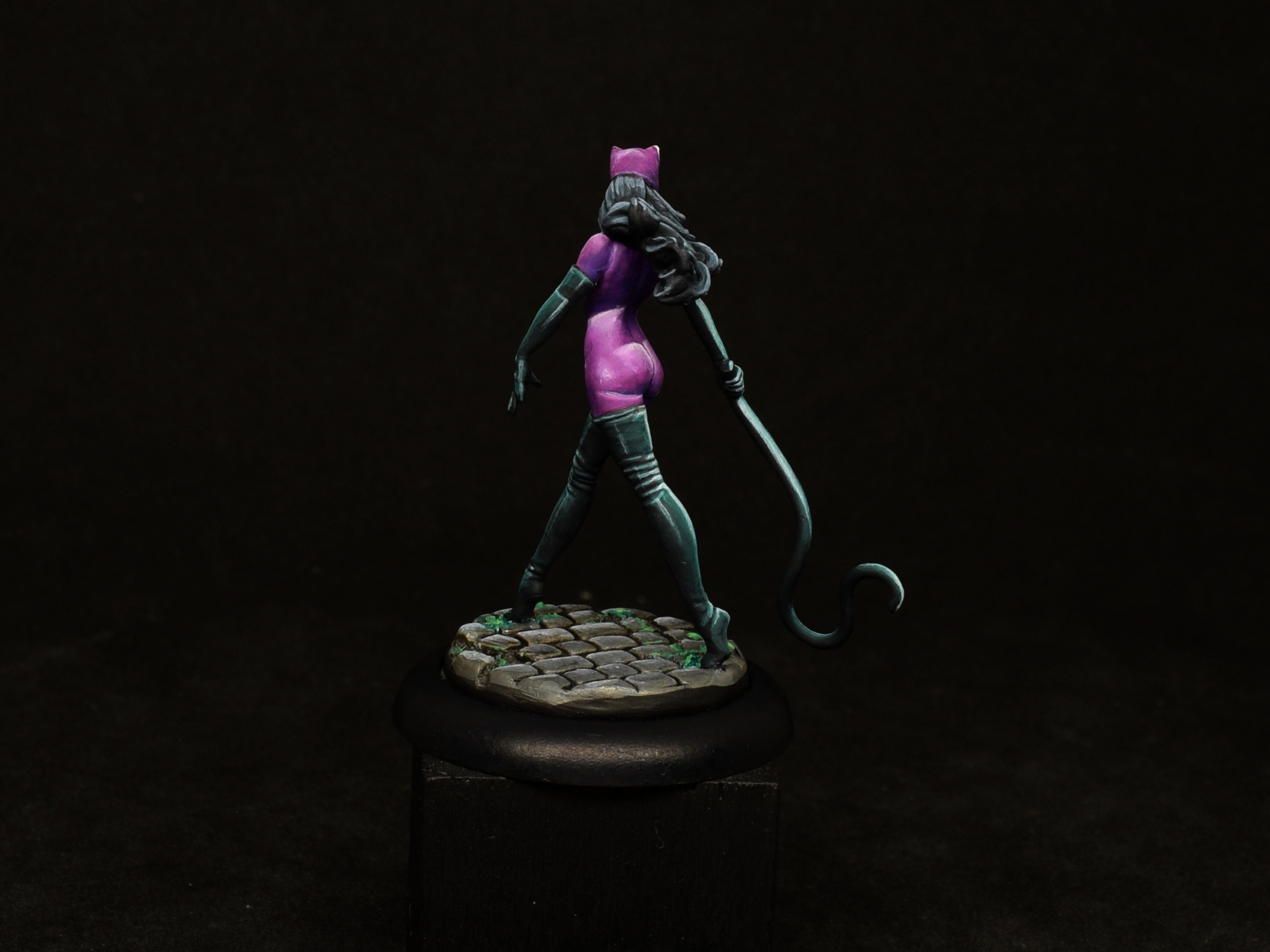 Catwoman 14.JPG