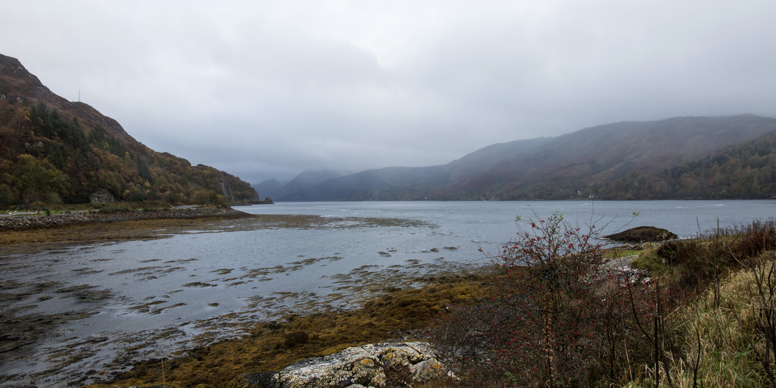 Scotland_highlands3.jpg