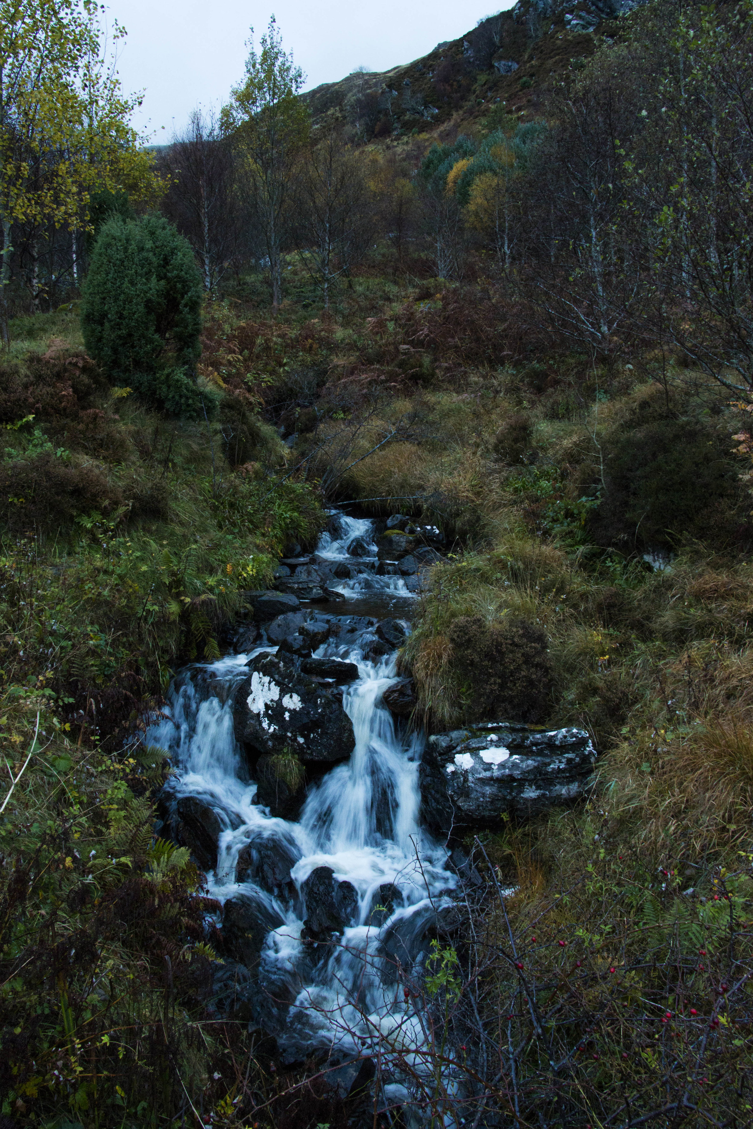 Scotland_higlands5.jpg