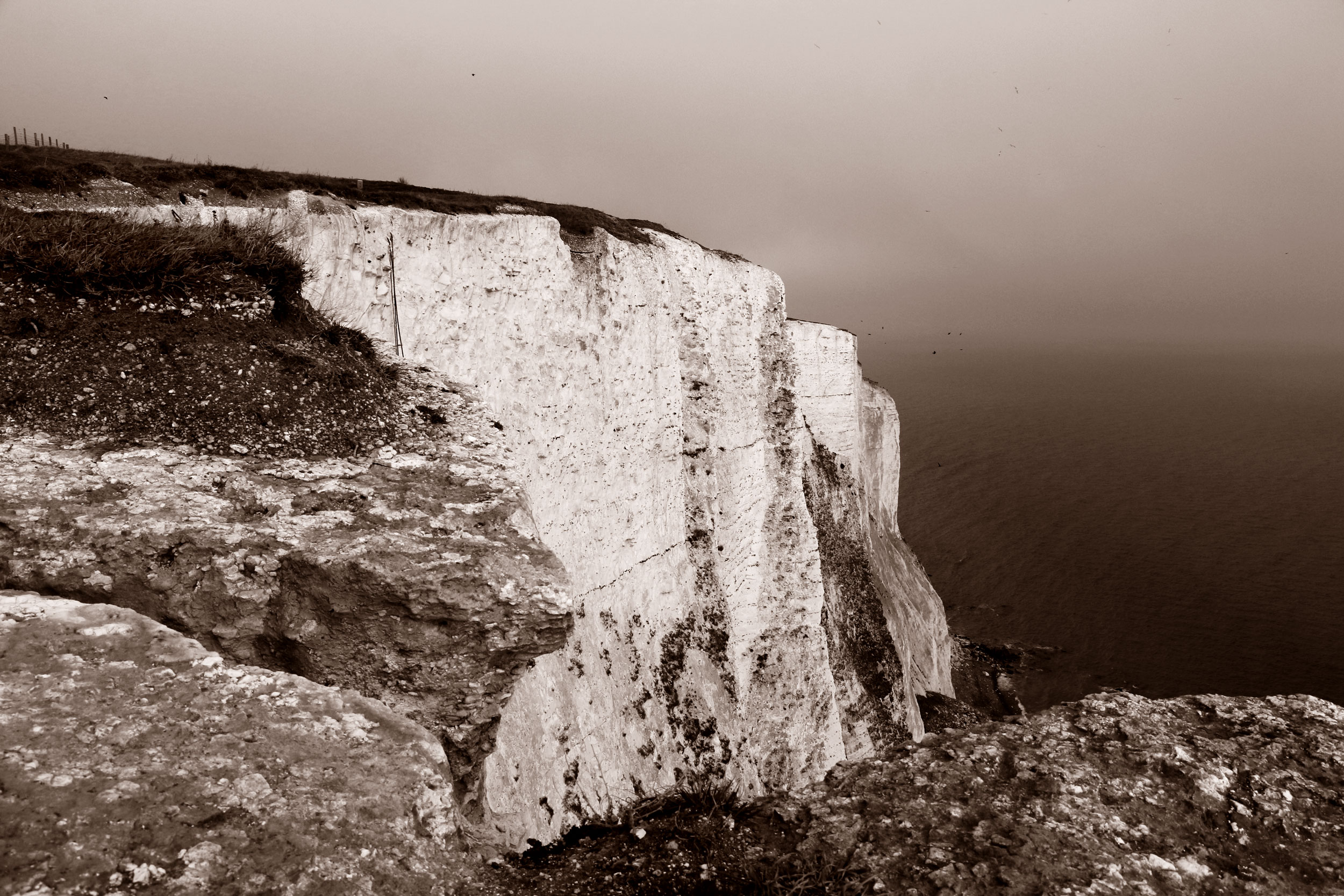 White-Cliffs5_duo_web.jpg