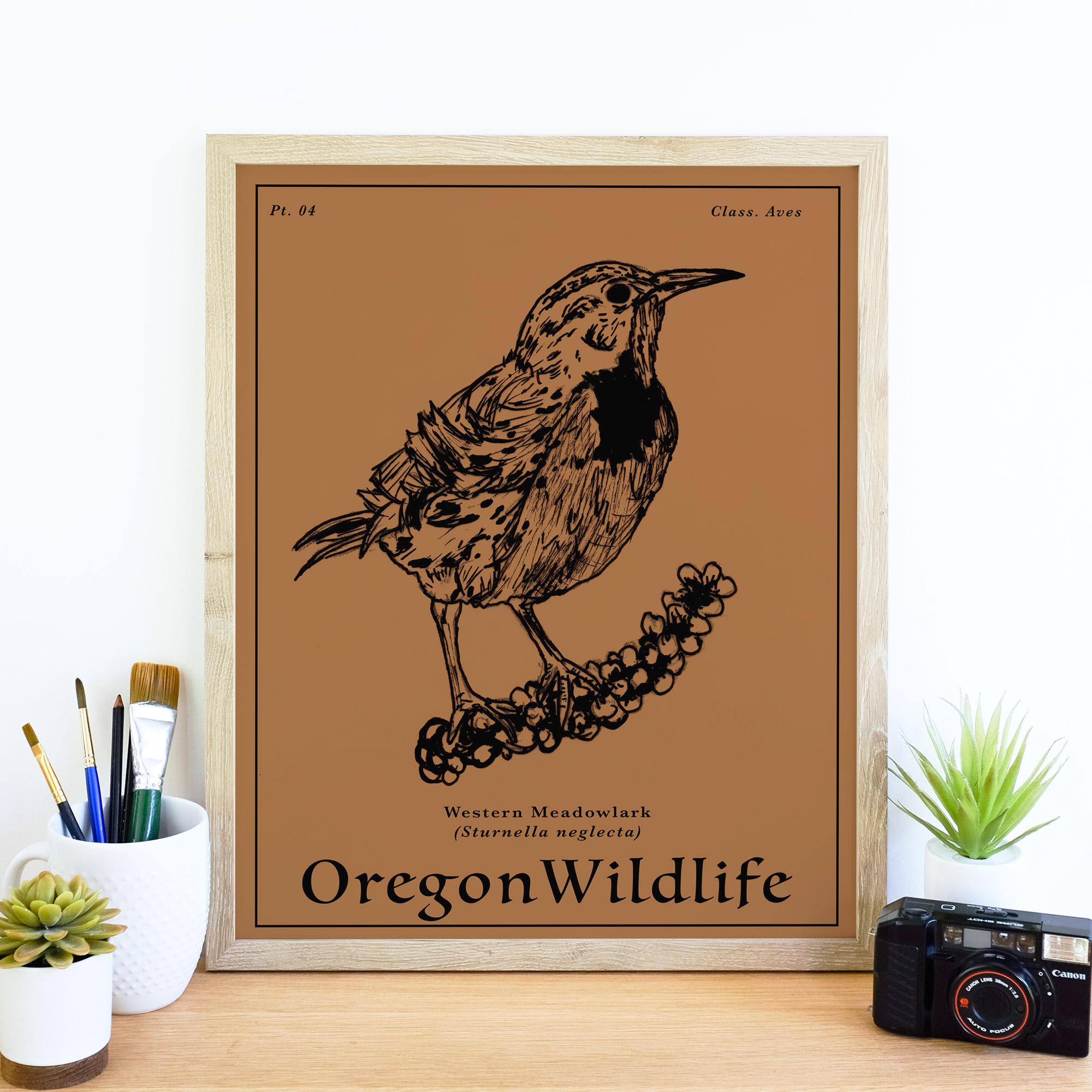 westernMed_wildlife.jpg