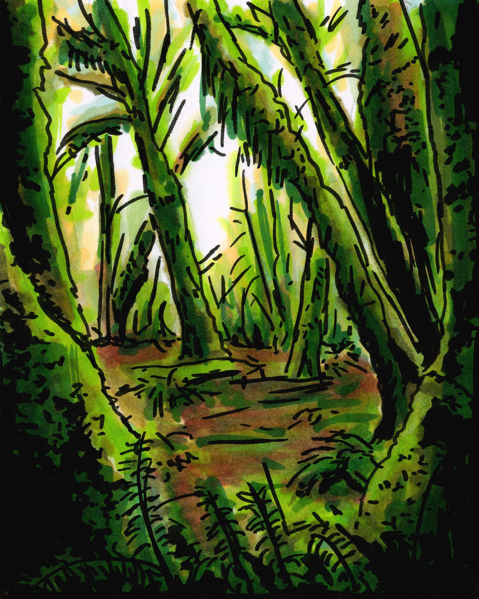 Oregon-Forest_web.jpg