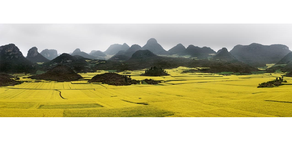 Canola Fields 2, Luoping, Yunnan Province, China, 2011