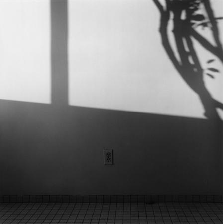 Shadows, 1982