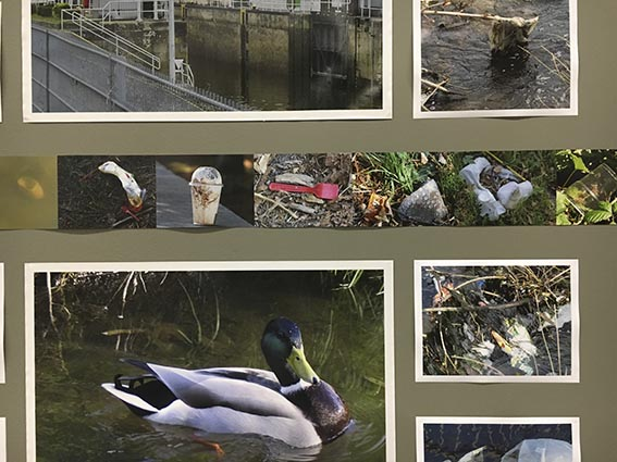 Detail:The Fulda River in Kassel. Strips of photographs of plastic litter on the streets of Kassel, Athens and Sydney flow through the imagery around the three walls of the installation.