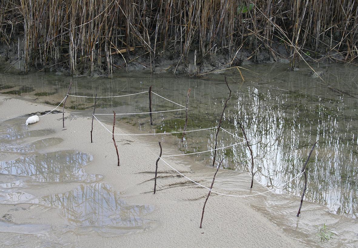 41 Lake Alexandrina - The Grid 2007.jpg