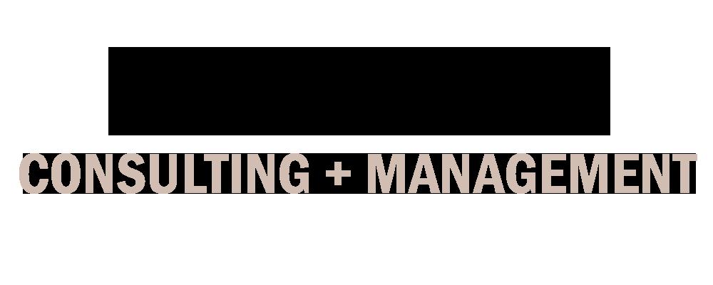 social media consult + management (2).png