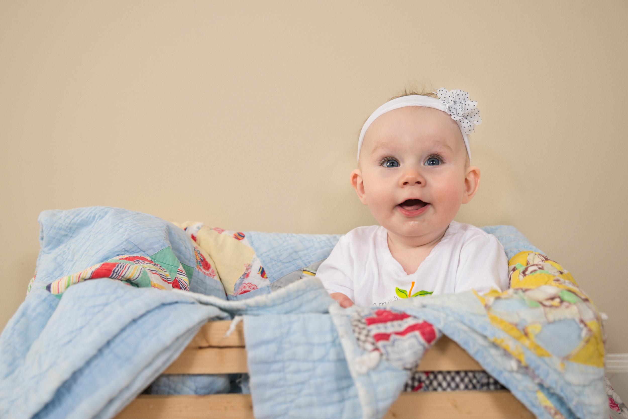 Pemberley: 6 months old!