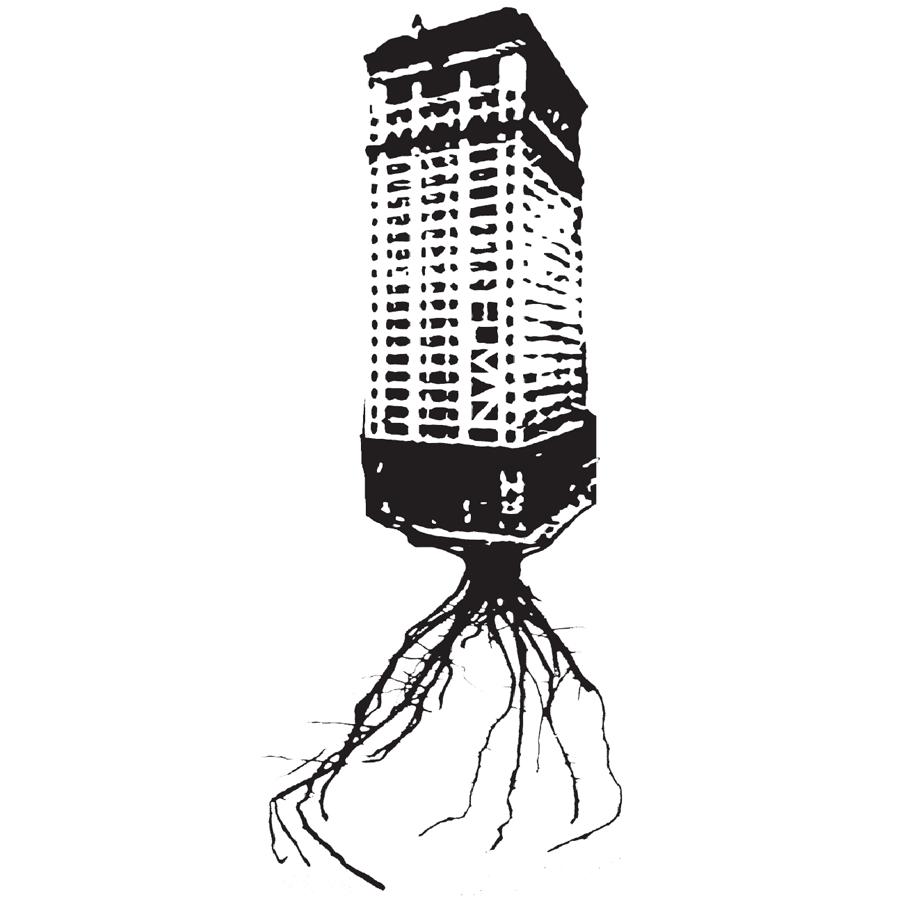 BUILDINGROOTS.png