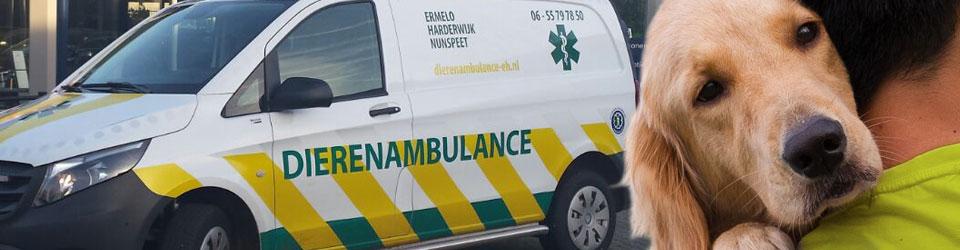 Dierenambulance Ermelo-Harderwijk