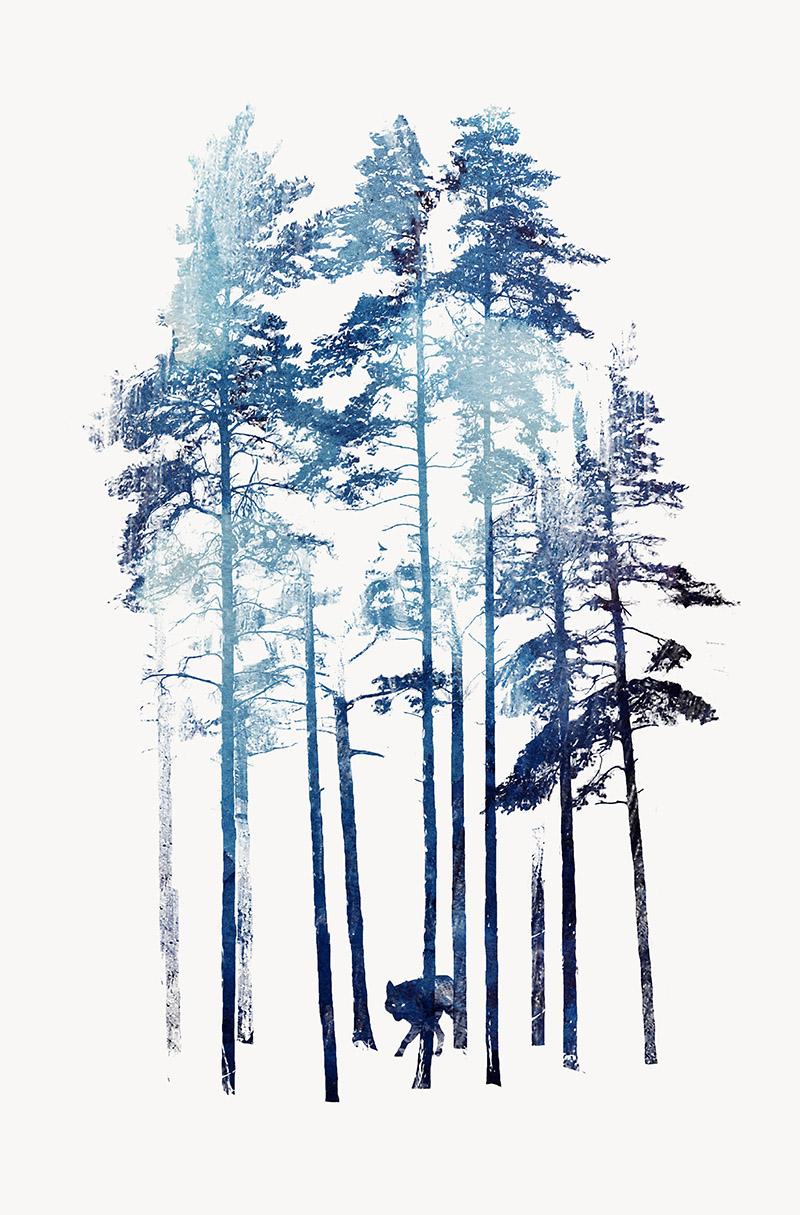 winter_wolf.jpg