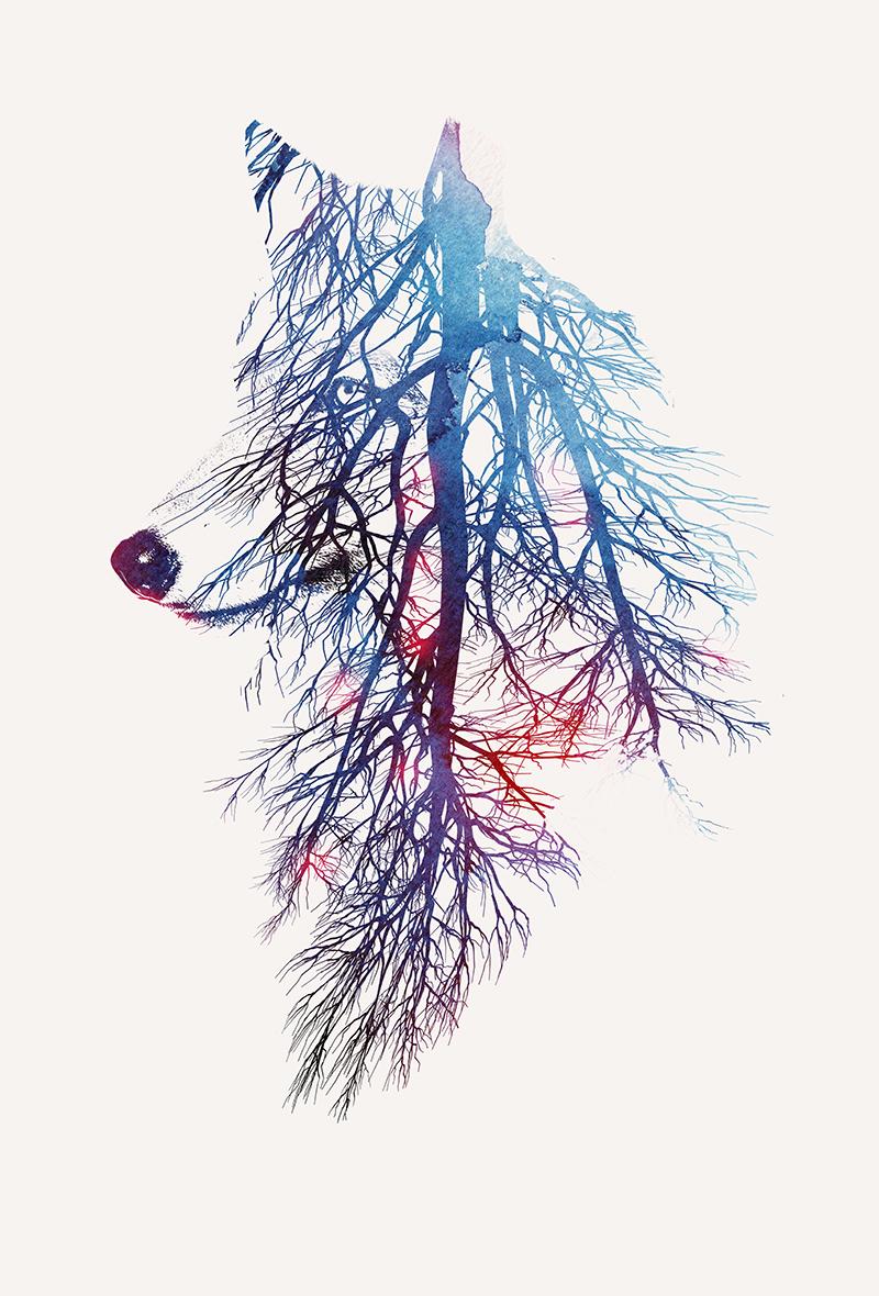 my_roots.jpg