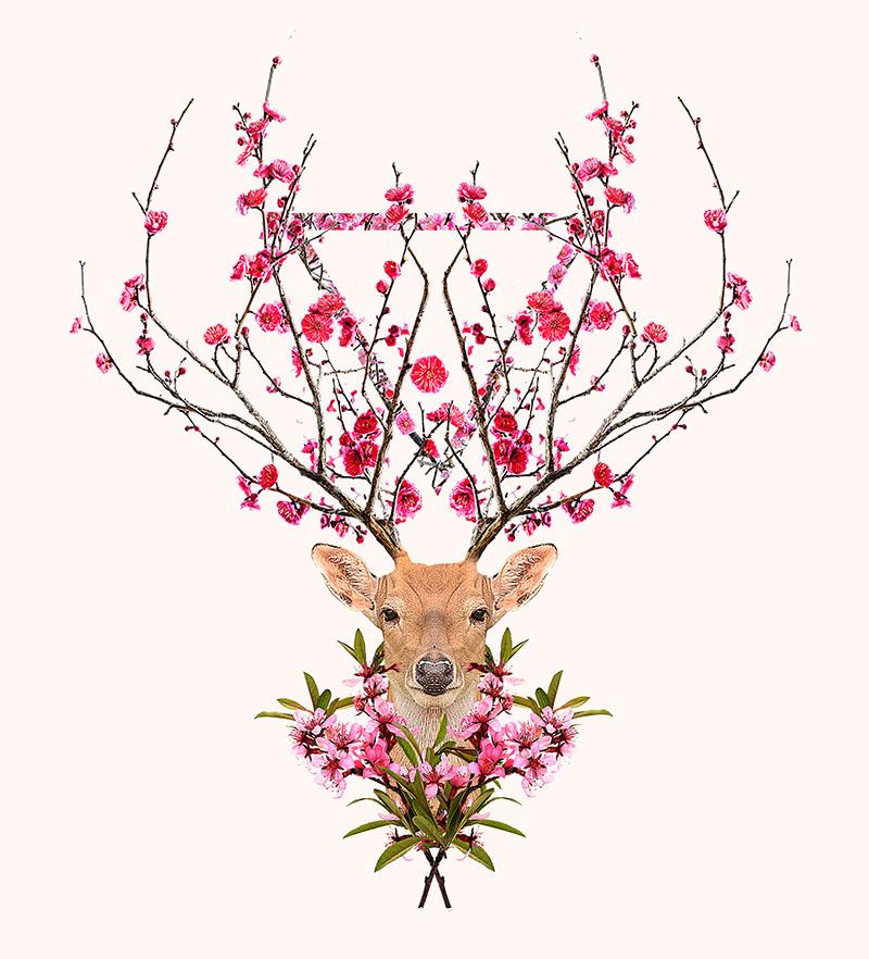 spring_deer.jpg