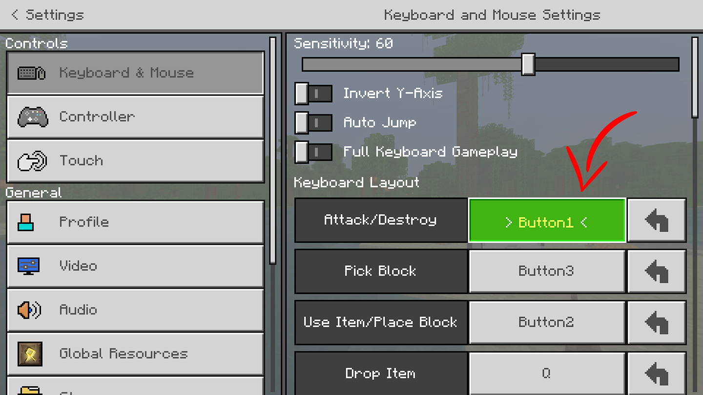 PP-Minecraft-Changing-Settings2.png
