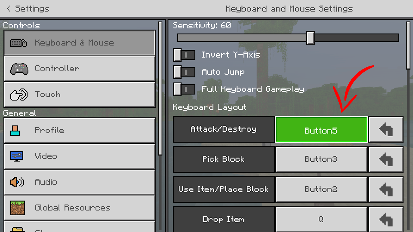 PP-Minecraft-Changing-Settings3.png