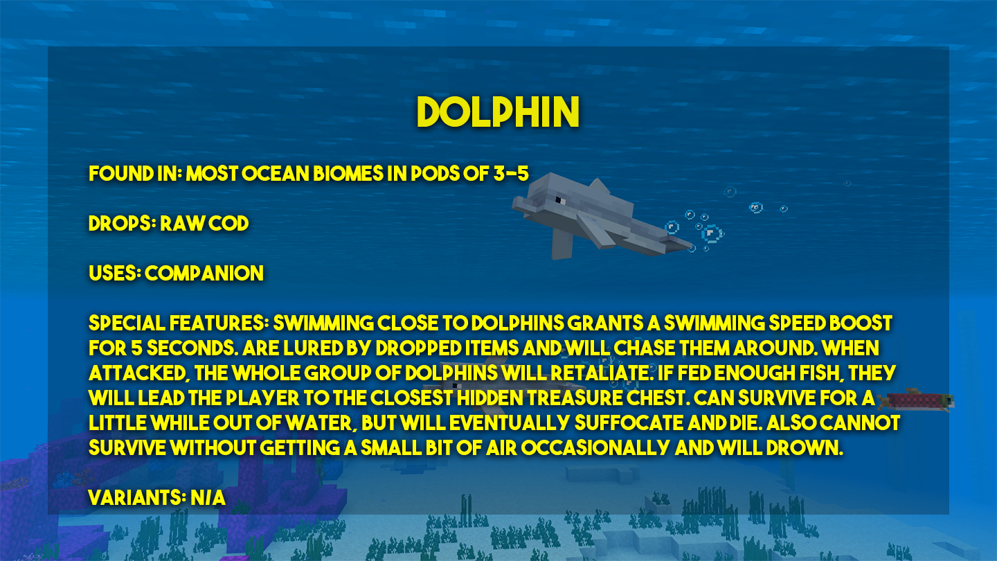 PP-Dolphin.png