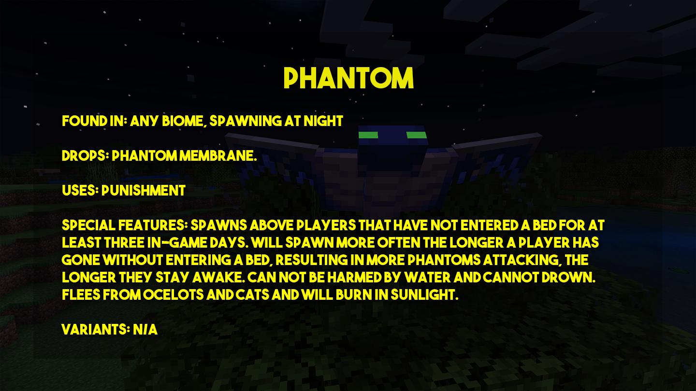 PP-Phantom.png