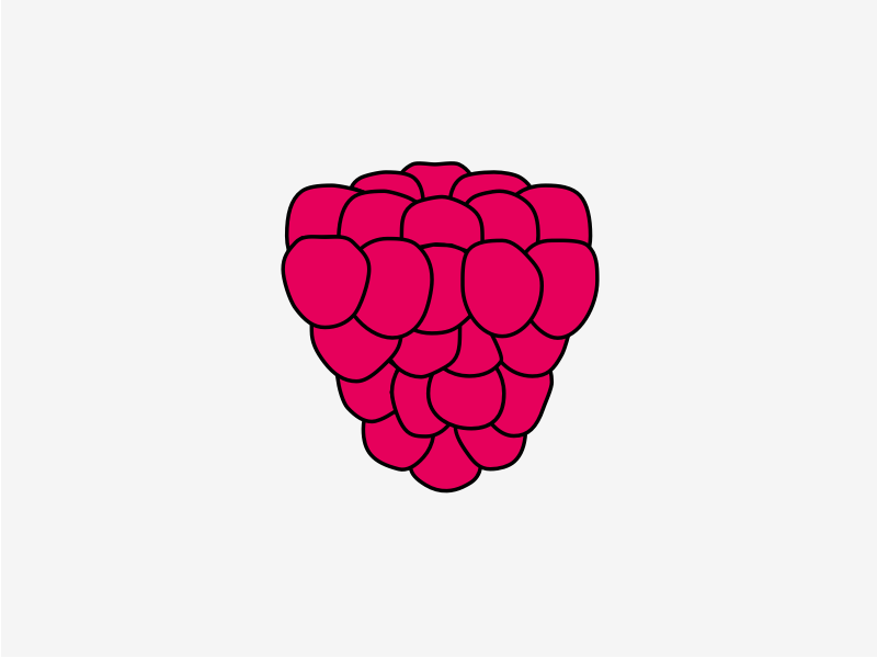 My first shot on Dribbble—The Missing Raspberry logo