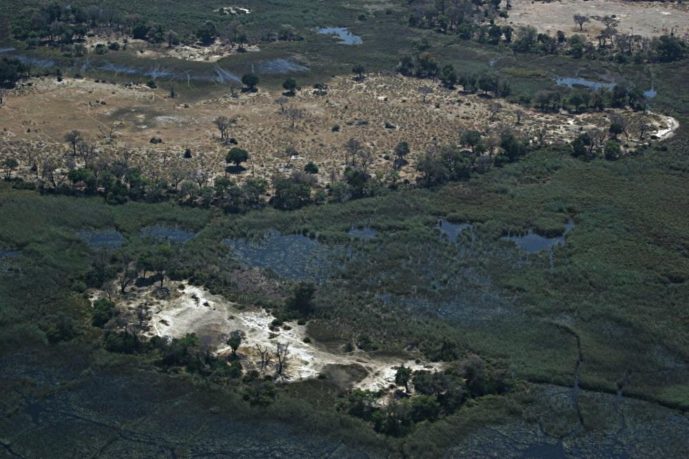 Coaching,+Training+and+Mentoring+in+the+Okavango+Delta.jpg