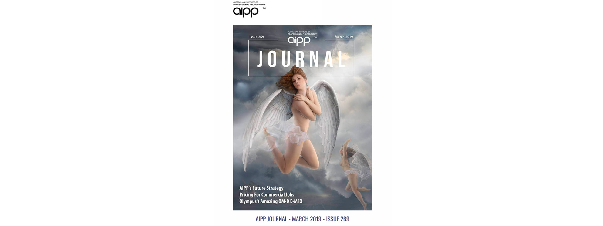 AIPP Journal Cover_Danny_Kneebone banner.jpg