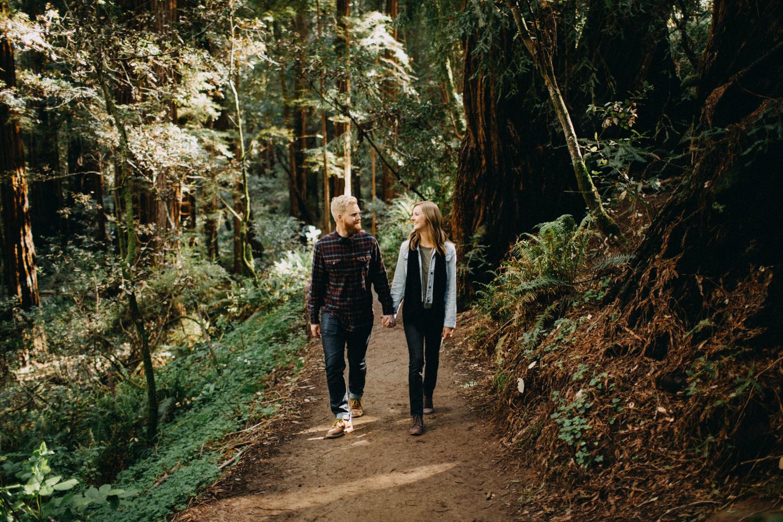 beautiful muir woods