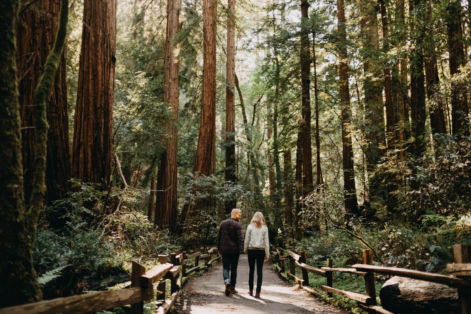 couple and redwoods