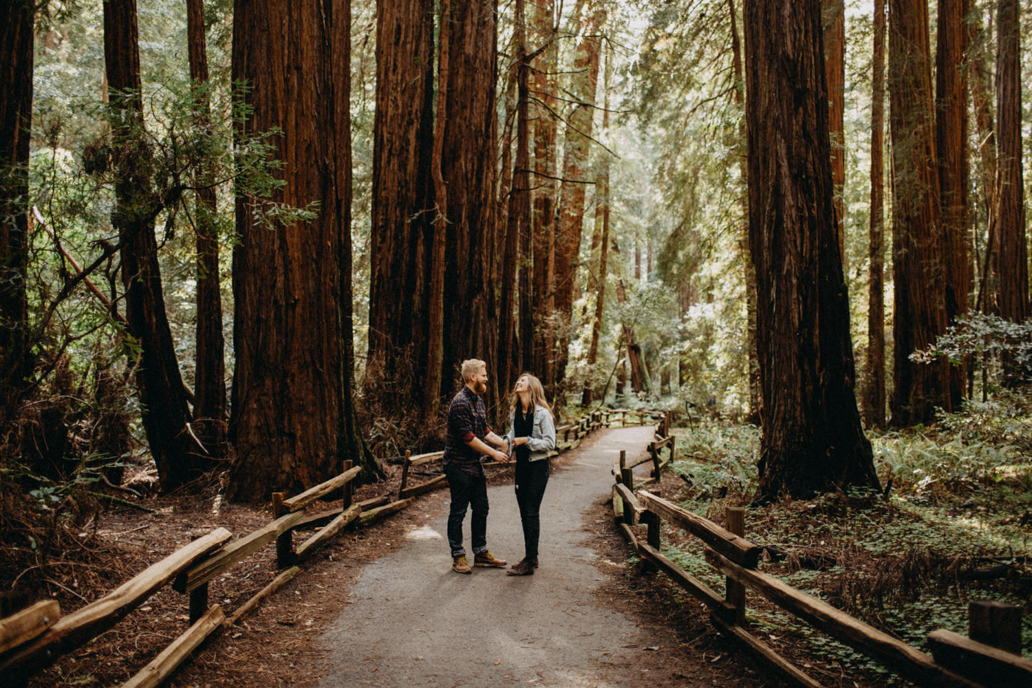 from san francisco to the forest