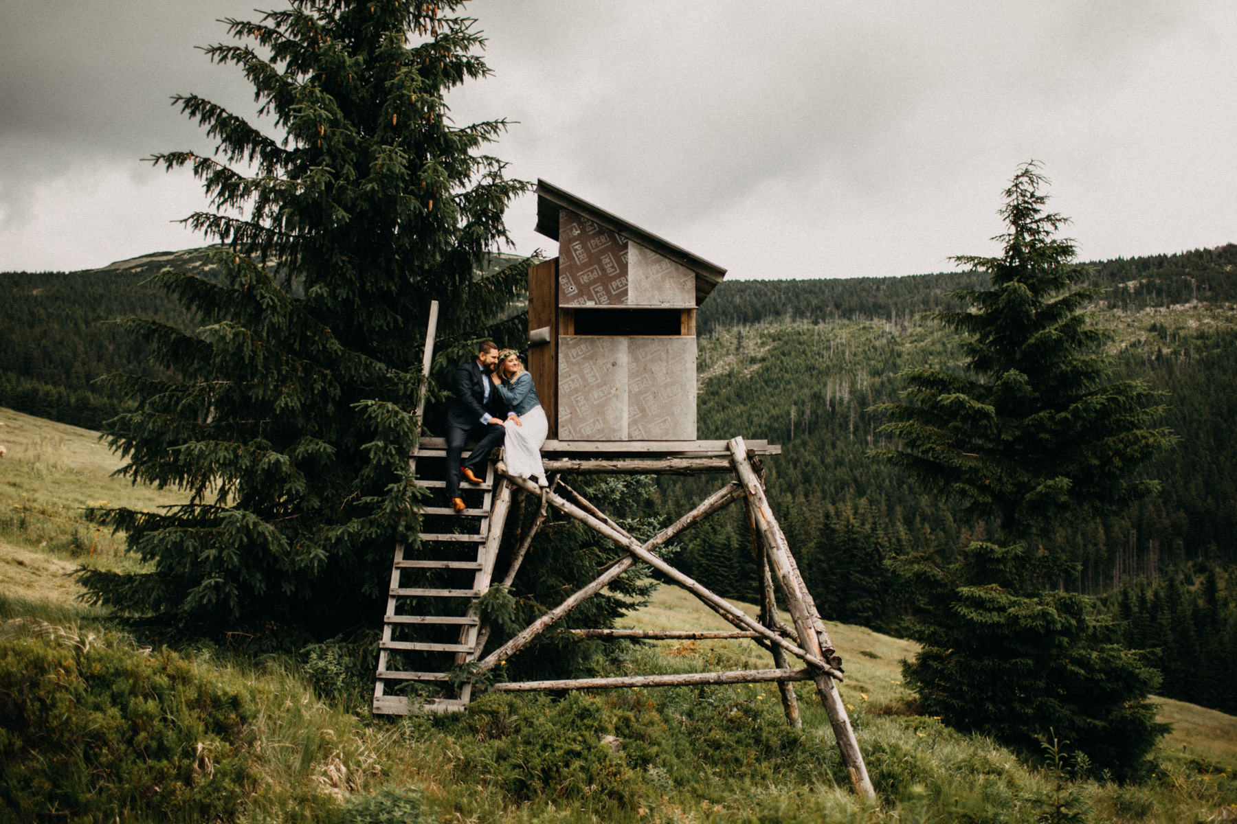 bride and groom found a cabin in the forest