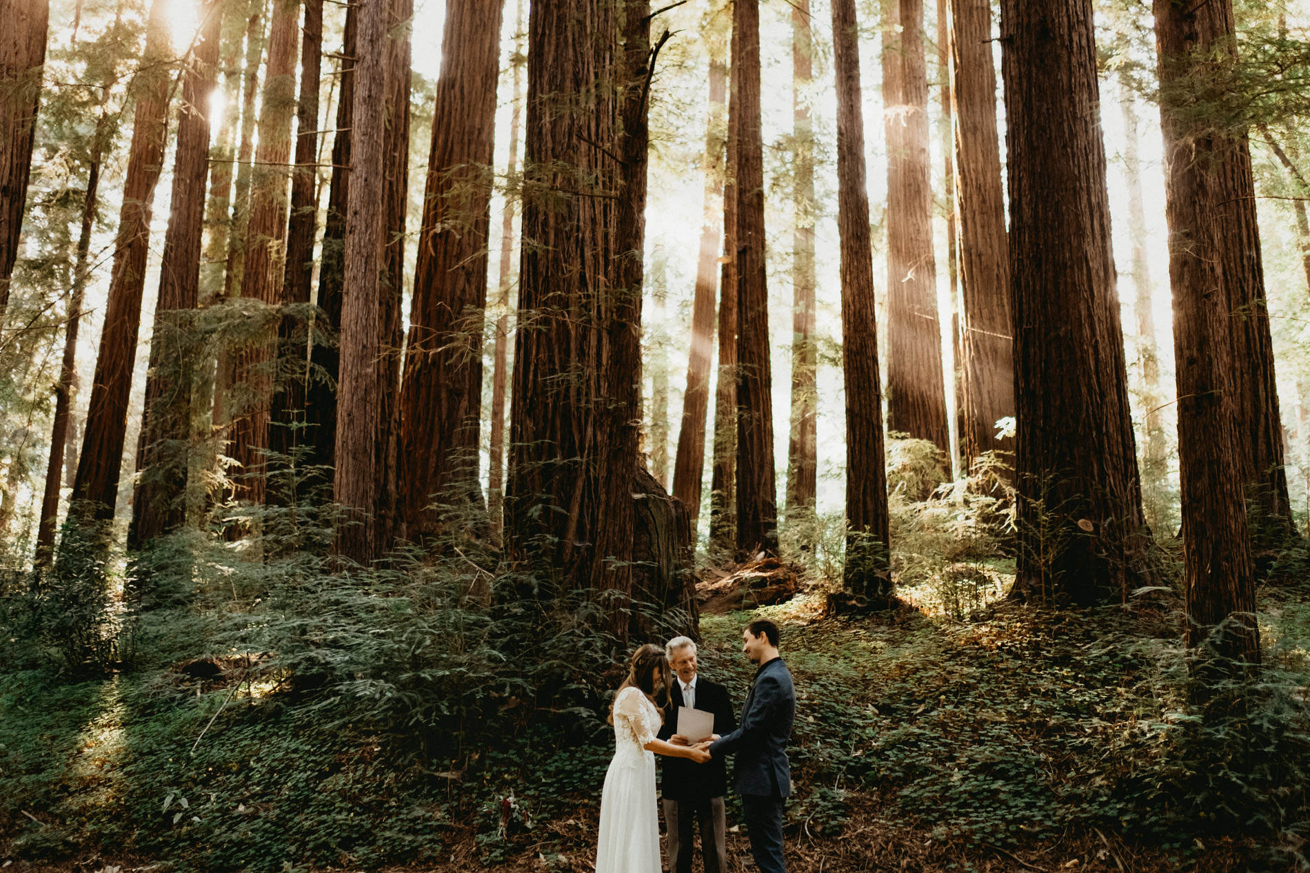 Big Sur Wedding venue under the redwoods